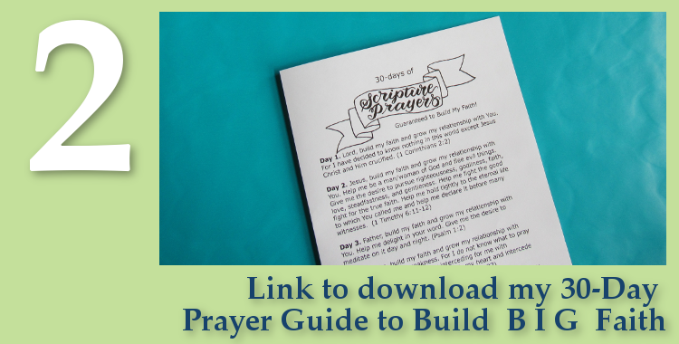 Free Gift - 30-Day Prayer Guide to Build BIG Faith